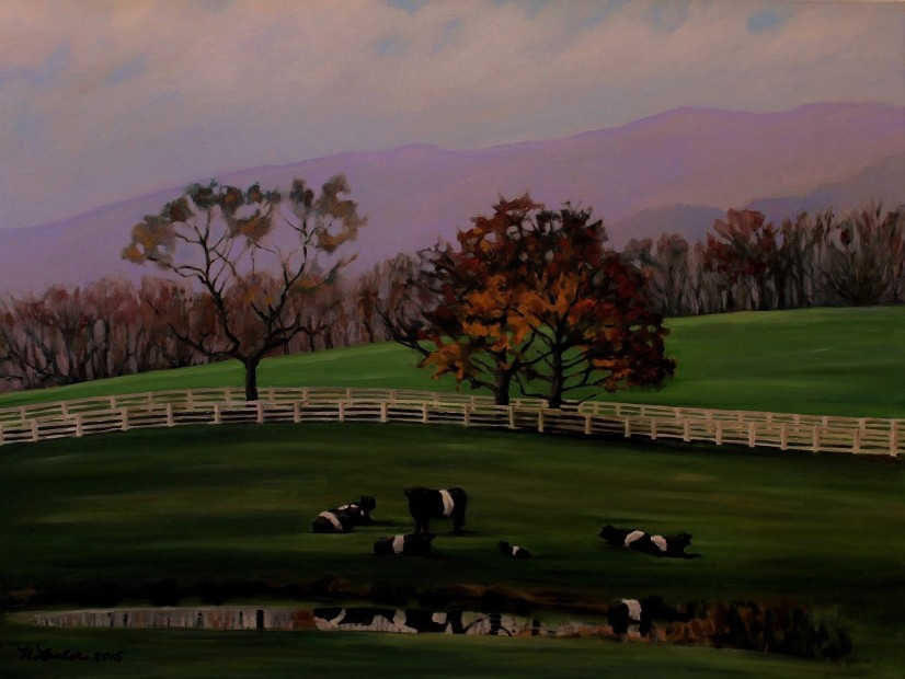 belted-galloways-orchid-mountain-30x40oilon-canvas-lauler